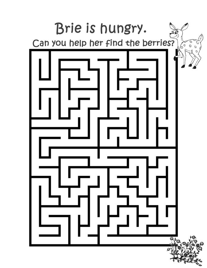 Bries Maze